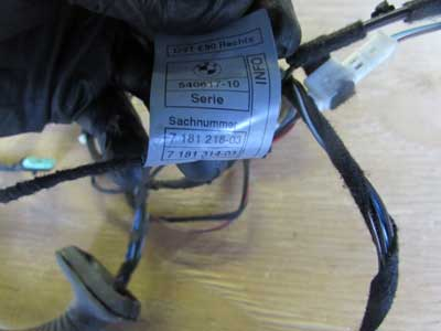 Autopart on bmw e91 wiring harness